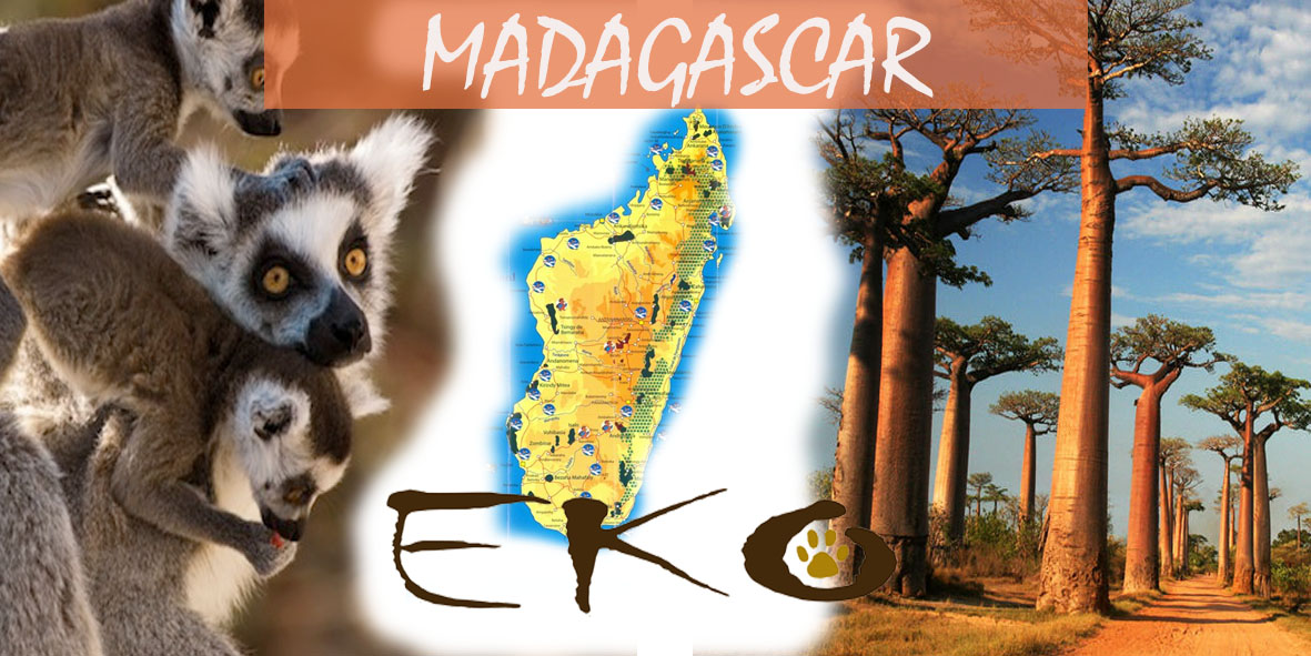 MADAGASCAR TOUR IN ITALIANO