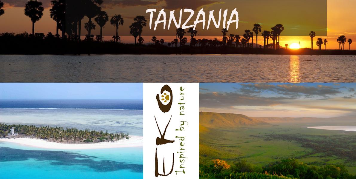 TANZANIA copia