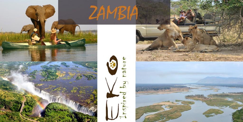 ZAMBIA copia