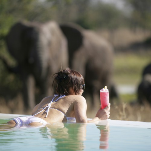 kapama-river-lodge-kapama-river-lodge-pool-22