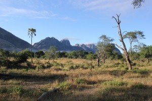 niassa national park