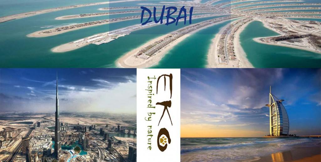 DUBAI copia